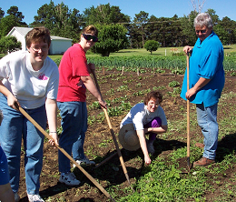 "Awareness of God can be observed in cultivating the garden through the ""work of our hands."""